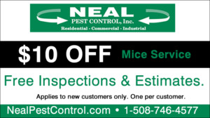 Mice Coupon
